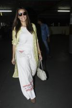 Neha Dhupia snapped at airport on 30th Aug 2016 (20)_57c681aa7833c.JPG
