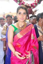 Raashi Khanna Inagurated R.S Brothers at Kothapet on 2nd Sept 2016 (346)_57c9a2080d28e.JPG