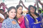 Raashi Khanna Inagurated R.S Brothers at Kothapet on 2nd Sept 2016 (375)_57c9a27478a0e.JPG