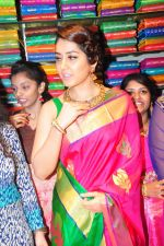 Raashi Khanna Inagurated R.S Brothers at Kothapet on 2nd Sept 2016 (447)_57c9a3a0844f7.JPG