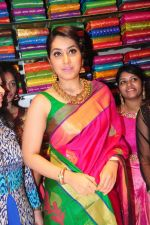 Raashi Khanna Inagurated R.S Brothers at Kothapet on 2nd Sept 2016 (521)_57c9a4eb83f44.JPG