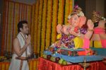 Tusshar Kapoor Ganpati celebration on 5th Sept 2016 (23)_57ce69068d582.JPG