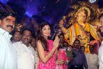 Shilpa Shetty Visit At Chinchpokli Cha Chintamani on 7th Sept 2016 (9)_57d101f96b35e.jpg