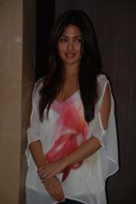 Riya Sen at PVR for Dark Chocolate film on 8th Sept 2016 (6)_57d26462d3d99.JPG