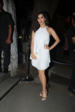 Sophie Chaudhary at Raj Kundra_s birthday in The Korner House on 8th Sept 2016 (173)_57d2969cf19e3.JPG