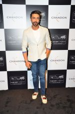 Aashish Chaudhary at the unveiling Chandon X McLaren Honda installation in Mumbai on 9th Sept 2016 (28)_57d40eaca15d9.JPG