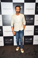 Aashish Chaudhary at the unveiling Chandon X McLaren Honda installation in Mumbai on 9th Sept 2016 (29)_57d40eaf733c1.JPG