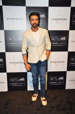 Aashish Chaudhary at the unveiling Chandon X McLaren Honda installation in Mumbai on 9th Sept 2016 (30)_57d40eb0643a0.JPG