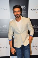 Aashish Chaudhary at the unveiling Chandon X McLaren Honda installation in Mumbai on 9th Sept 2016 (27)_57d40eab2c7c4.JPG