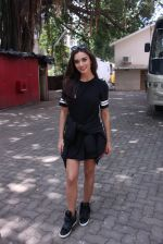 Amy Jackson snapped in Mumbai on 9th Sept 2016 (8)_57d4161f89964.JPG