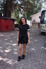 Amy Jackson snapped in Mumbai on 9th Sept 2016 (5)_57d4161caca36.JPG