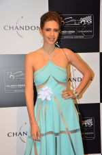Kalki Koechlin at the unveiling Chandon X McLaren Honda installation in Mumbai on 9th Sept 2016 (37)_57d40f23a46a4.JPG