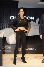 Kangana Ranaut at the unveiling Chandon X McLaren Honda installation in Mumbai on 9th Sept 2016 (6)_57d40e078bfbd.JPG
