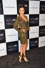 Malaika Arora Khan at the unveiling Chandon X McLaren Honda installation in Mumbai on 9th Sept 2016 (25)_57d40f0cb50ba.JPG