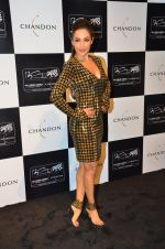Malaika Arora Khan at the unveiling Chandon X McLaren Honda installation in Mumbai on 9th Sept 2016 (26)_57d40f0da7c29.JPG