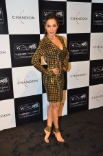 Malaika Arora Khan at the unveiling Chandon X McLaren Honda installation in Mumbai on 9th Sept 2016 (27)_57d40f0f10e0c.JPG