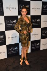 Malaika Arora Khan at the unveiling Chandon X McLaren Honda installation in Mumbai on 9th Sept 2016 (29)_57d40f115b26d.JPG