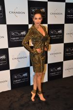 Malaika Arora Khan at the unveiling Chandon X McLaren Honda installation in Mumbai on 9th Sept 2016 (30)_57d40f1317904.JPG