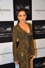 Malaika Arora Khan at the unveiling Chandon X McLaren Honda installation in Mumbai on 9th Sept 2016 (32)_57d40f153885a.JPG