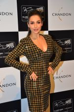 Malaika Arora Khan at the unveiling Chandon X McLaren Honda installation in Mumbai on 9th Sept 2016 (33)_57d40f1641df2.JPG