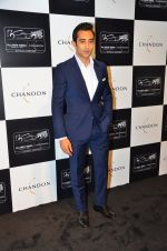 Rahul Khanna at the unveiling Chandon X McLaren Honda installation in Mumbai on 9th Sept 2016 (10)_57d40f1f3685f.JPG