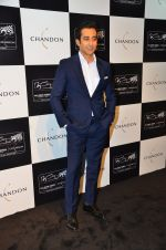 Rahul Khanna at the unveiling Chandon X McLaren Honda installation in Mumbai on 9th Sept 2016 (14)_57d40f2356669.JPG