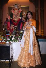 Sophie Choudry at Ganpati mandal on 9th Sept 2016 (36)_57d417f198e36.JPG