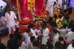 Tammanah Bhatia at Lalbaugcha Raja on 11th Sept 2016 (21)_57d64dc3b9b0b.JPG