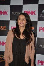 Minissha Lamba at Pink Screening in Sunny Super Sound on 12th Sept 2016 (47)_57d7a9e139ec7.JPG