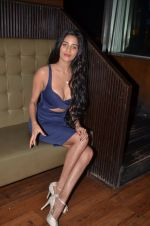 Poonam Pandey_s Short film The Weekend which is for mobile lovers on 12th Sept 2016 (12)_57d79f0e89c88.JPG