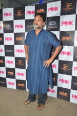 at Pink Screening in Sunny Super Sound on 12th Sept 2016 (14)_57d7a97df4049.JPG