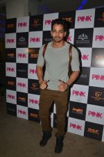at Pink Screening in Sunny Super Sound on 12th Sept 2016 (6)_57d7a97c86303.JPG