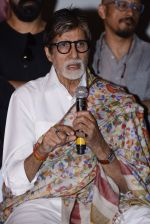 Amitabh Bachchan at Pink success meet on 19th Sept 2016 (20)_57e01ae34dc3e.JPG