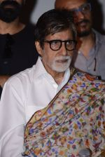 Amitabh Bachchan at Pink success meet on 19th Sept 2016 (26)_57e01ae8ded2b.JPG