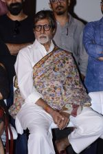 Amitabh Bachchan at Pink success meet on 19th Sept 2016 (34)_57e01aee909db.JPG