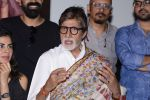 Amitabh Bachchan at Pink success meet on 19th Sept 2016 (36)_57e01aefddbc9.JPG