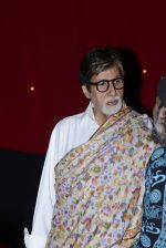 Amitabh Bachchan at Pink success meet on 19th Sept 2016 (5)_57e01ad782923.JPG