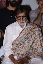 Amitabh Bachchan at Pink success meet on 19th Sept 2016 (8)_57e01ada1871b.JPG