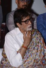 Amitabh Bachchan at Pink success meet on 19th Sept 2016 (85)_57e01af40c554.JPG