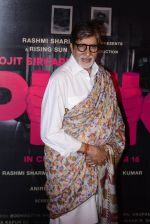 Amitabh Bachchan at Pink success meet on 19th Sept 2016 (91)_57e01af938f46.JPG
