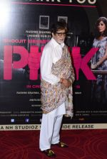 Amitabh Bachchan at Pink success meet on 19th Sept 2016 (92)_57e01afa0e2db.JPG