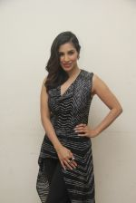 Sophie Choudry at lala lajpatrai college Fest on 25th Sept 2016 (14)_57eaa546b2cad.JPG