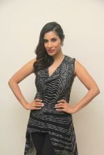 Sophie Choudry at lala lajpatrai college Fest on 25th Sept 2016 (25)_57eaa54491ae9.JPG