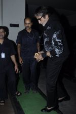 Amitabh Bachchan at Mirzya screening on 30th Sept 2016 (21)_57f0ec8bdda01.JPG