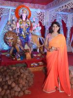 Sonali Kulkarni visited Worli Sarvajanik Navratra Mahotsav Mandal to blesing of Ma Durga at Worli on 8th Oct 2016 (4)_57fb46d494fd7.JPG
