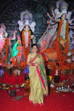 Sumona Chakravarti at Durga Pooja on 10th Oct 2016 (29)_57fb789248612.JPG