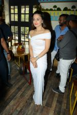 Ameesha Patel at Bollywood Mr and Miss India on 10th Oct 2016 (51)_57fc8d7b3a61e.jpg