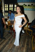 Ameesha Patel at Bollywood Mr and Miss India on 10th Oct 2016 (53)_57fc8dde8bdc1.jpg