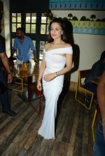 Ameesha Patel at Bollywood Mr and Miss India on 10th Oct 2016 (54)_57fc8e0a5e573.jpg