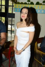 Ameesha Patel at Bollywood Mr and Miss India on 10th Oct 2016 (55)_57fc8e2399cb7.jpg